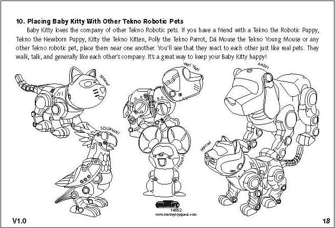 teksta newborn kitty instructions